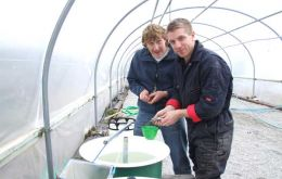 Visiting Masters student B. Perry (left) and biologist D. Fowler extract eggs from zebra trout at the aquaculture farm