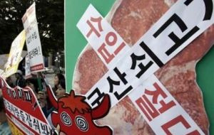 "The Korean writing on the signs reads ""We oppose import U.S. beef."""