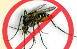 Uruguay is the only country of the region free of dengue