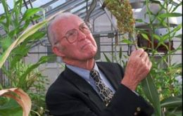 Still active in teaching and research Prof Borlaug helped save hundreds of millions of lives, according to the Nobel Institute