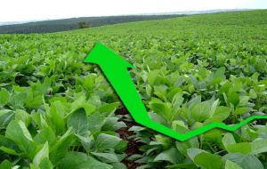 Soy is the chief production, accounting for almost half of the total crop