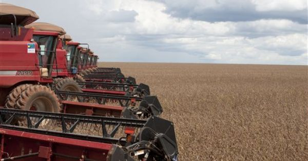 Brazilian Farmers Prospect For Phosphates To Cap