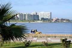 Pleasant and liveable Pocitos beach in Montevideo