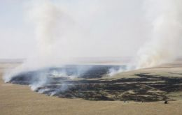 Scorched fields in Russia, unable to contain record temperatures and lack of rain