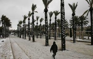Brazilians associated to sun and beaches enjoy the unexpected snow