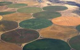 Centre-pivot irrigation systems produce the familiar circles seen by airline passengers.