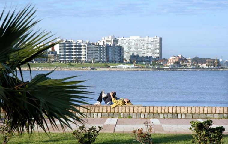 Pocitos beach in Montevideo city