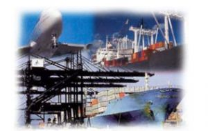 In 2010, imports jumped 42% and exports 31%