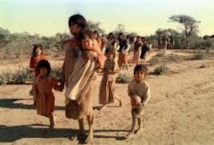 Indigenous colonies in the northern territory of Argentina