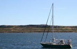 The 'Shaman' in Stanley harbour