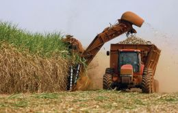 Brazil is one of the world's leading producers of sugar cane and bio-fuel