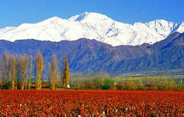 Some of the best soils for quality vineyards can be found on both sides of the Andes