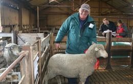 Ian Jaffrey with champion ewe RBA Fitzoy Sheep Show
