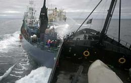 Clashes in the high seas between environmentalists and Japanese whalers