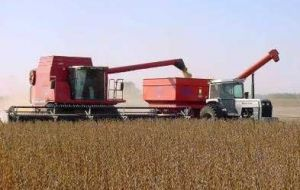 Farmers in Argentina have been reluctant to sell soybeans