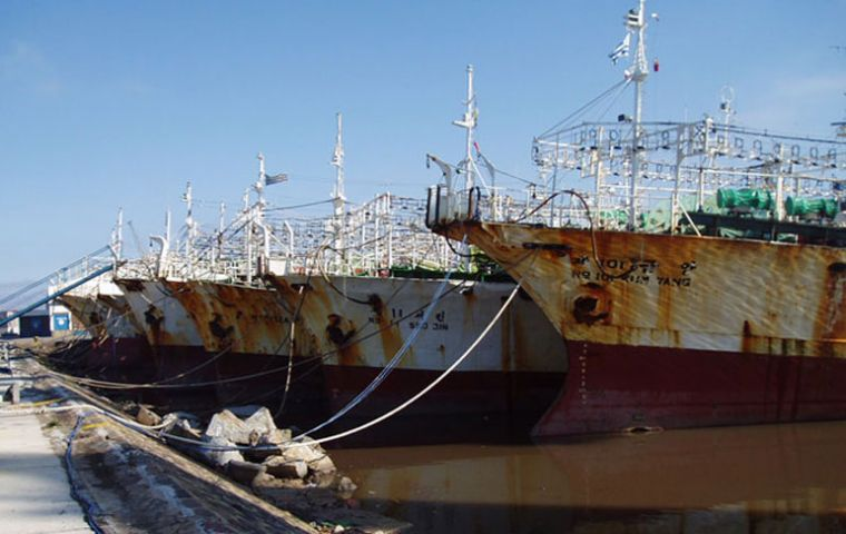 Off-season jiggers lined up in the port of Montevideo