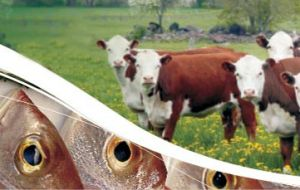 Beef cut prices in the domestic market doubled in the last twelve months