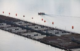 Salmon farms in the south of Chile