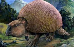 Remains of glyptodonts were discovered in a creek bed 35 kilometres from Montevideo