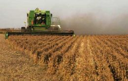 Soybean production in South America reached 136.4 million tons in early 2011