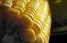 Colombian corn imports for the 2011/12 year are expected to be greater that those of China