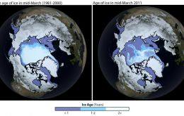 The extent of Arctic sea ice in 2011 was the second lowest on record