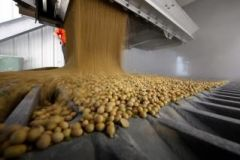 Soy bean export stocks are well below the normal average for this time of the year