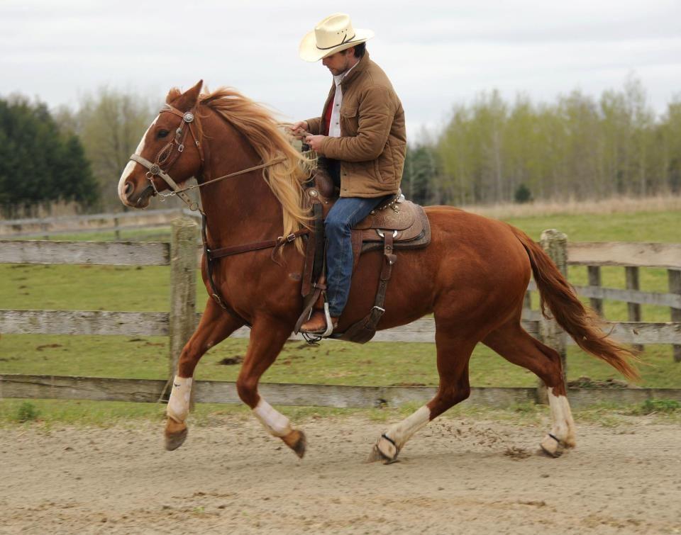 Western Horseback Riding | How To Ride A Horse Like A Cowboy ...