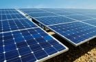 All manufacturers continued to produce massive quantities of solar panels despite overstocked inventories