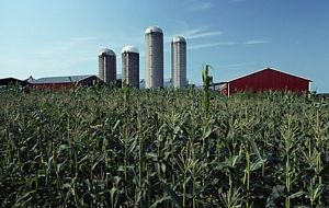 US farms land rose by 10.9% over the last year