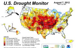 US corn production estimated to be down by 17% because of the drought