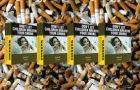 Six million people die every year because of tobacco products