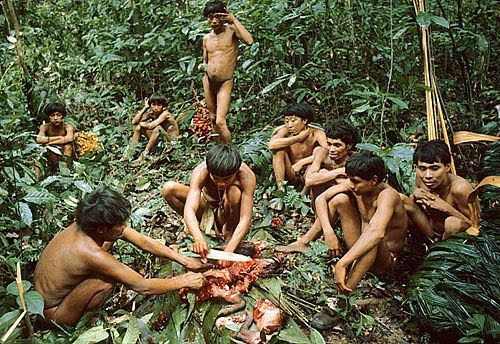 Jungle Tribe People the Amazon jungle and are