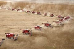 The soybean area in Brazil is forecast to expand for the fifth year running to 67/69 million acres, according to forecasts