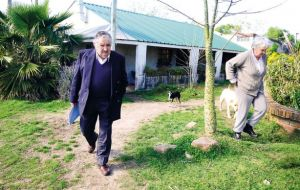 Mujica in his farm with 'Manuela' and his wife Senator Lucia Topolansky