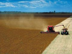 The country is set to become the world largest soy bean producer ahead of the US