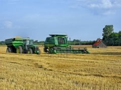 Wheat harvesting has also been delayed and the crop estimate was lowered 5% by the government