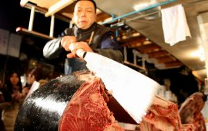 The Tsukiji market kept to tradition in the first auction of the year