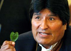 President Morales in one of his many trips abroad chewing a coca leaf
