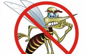 The Aedes mosquito is in over 150 countries and the dengue threat exists all across the globe