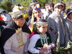 Mapuches make up 6% of the Chilean population and represent significant numbers in two Patagonian regions