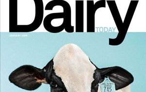 Dairy products' prices remained relatively stable during January