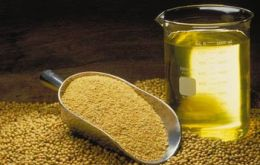 Argentine export price of soy-oil has plummeted 21% so far this year