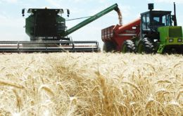 Adverse climate conditions are also threatening the November/December wheat harvest