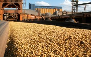 If forecasts prove right, soybean production would increase 10.5% over 2012/13
