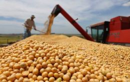 Soybeans has become the main export item and China the leading trade partner