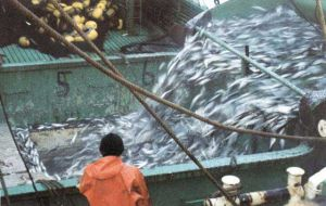 """Attacking fisheries activities with fiscal threats and fines is the Argentine government immediate strategy"""
