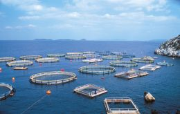 Aquaculture production is estimated at 67 million tons in 2012 and 70 million tons for 2013