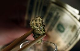 Sales were estimated at 14 million dollars from 59 marijuana firms