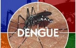 Last year Brazil reported 1.4 million cases of dengue